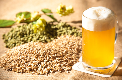 Liquid Gold: How Beer is Made